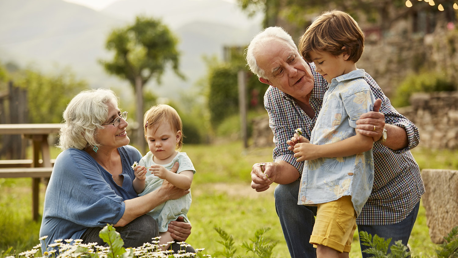 Fun facts about grandparents